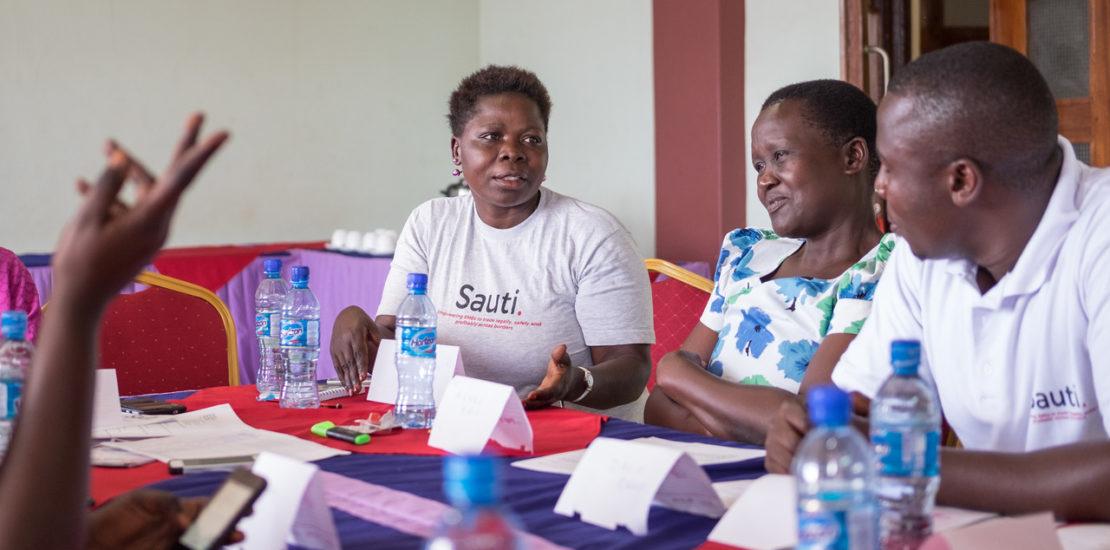 Sauti stakeholder meeting